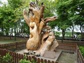 羅東林業園區:P1250322.JPG