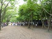 羅東林業園區:P1250332.JPG