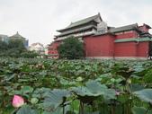 植物園賞荷:IMG_6520.JPG