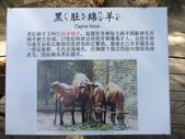 新竹綠世界生態農場:DSCF2807.jpg