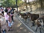 新竹綠世界生態農場:DSCF2810.jpg