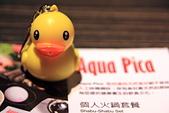 13-10-26 Aqua Pica:20131000016.JPG