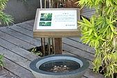 09-09-05 花蓮、台東、綠島 Day 4:IMG_4115.JPG