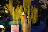 20120227爭艷館-蘭藝爭輝:20120227爭艷館-蘭藝爭輝- (226).J