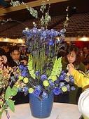2009台北國際花卉展:2009台北國際花卉展- (139).JPG