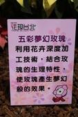 20120108爭艷館-花慶元旦:20120108爭艷館-花慶元旦- (94).JP