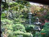 200412日本-東京、大阪:eric日本行-2 114.jpg