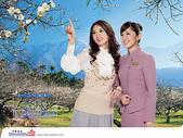 林志玲:中華 2008 林志玲月曆01.jpg