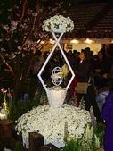 2009台北國際花卉展:2009台北國際花卉展- (155).JPG