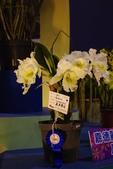 20120227爭艷館-蘭藝爭輝:20120227爭艷館-蘭藝爭輝- (217).J