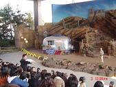 200412日本-東京、大阪:eric日本行-2 200.jpg