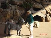 200412日本-東京、大阪:eric日本行-2 217.jpg