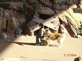 200412日本-東京、大阪:eric日本行-2 212.jpg