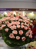 2009台北國際花卉展:2009台北國際花卉展- (148).JPG