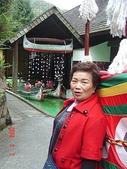 20080302九族文化村、集集:20080302九族文化村、集集- (132).