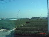200412日本-東京、大阪:eric日本行-2 020.jpg
