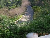 106.09.23動團旅跑:田美-向天湖-35.5k:向天湖-衝下坡.jpg