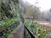 2012-12-2.3頭社水庫....奧萬大.天空之橋..二日遊:DSC00680.JPG