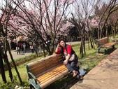 2010-2-26 陽明山花季:DSC01464.JPG