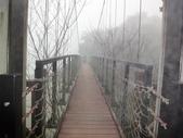 2012-12-2.3頭社水庫....奧萬大.天空之橋..二日遊:DSC00689.JPG
