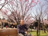 2010-2-26 陽明山花季:DSC01467.JPG