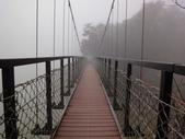 2012-12-2.3頭社水庫....奧萬大.天空之橋..二日遊:DSC00694.JPG