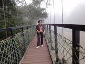 2012-12-2.3頭社水庫....奧萬大.天空之橋..二日遊:DSC00695.JPG