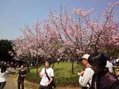2010-2-26 陽明山花季:DSC01457.JPG
