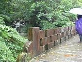 2009-11-17草嶺古道:CIMG4943.JPG