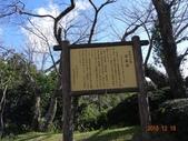 20151217-21 靜岡東京五日:DSC07010 (800x600).jpg