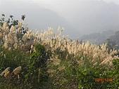 馬拉邦山98.12.8:CIMG5559.JPG