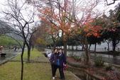 2013-01-01桃園石門賞楓賞梅:DSC01025.JPG