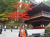 11/1~6日本自助六日探險:CIMG0036