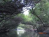四草生態坐船遊紅樹林好多魚往船上跳台南新化兩日遊981123:CIMG4610.JPG