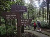 20110705東眼山:DSC03878.JPG