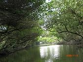 四草生態坐船遊紅樹林好多魚往船上跳台南新化兩日遊981123:CIMG4611.JPG