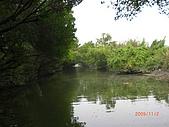 四草生態坐船遊紅樹林好多魚往船上跳台南新化兩日遊981123:CIMG4612.JPG
