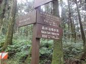 20110705東眼山:DSC03883.JPG