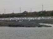 2010-2-16.至20日. 新年五日遊:DSC01221.JPG