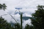 20130614-16太平山_拉拉山:P1020141.JPG