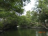四草生態坐船遊紅樹林好多魚往船上跳台南新化兩日遊981123:CIMG4613.JPG