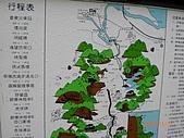 2009-11-17草嶺古道:CIMG4950.JPG