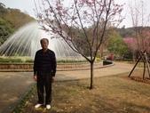 2010-2-26 陽明山花季:DSC01529.JPG