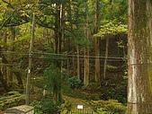 11/1~6日本自助六日探險:CIMG0081