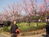 2010-2-26 陽明山花季:DSC01456.JPG