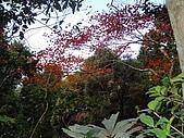 2010-1.5竹東五指山共26人:DSC00615.JPG