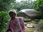 2009-11-17草嶺古道:CIMG4953.JPG