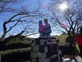 20151217-21 靜岡東京五日:DSC07011 (800x600).jpg