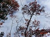 馬拉邦山98.12.8:CIMG5513.JPG