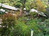 11/1~6日本自助六日探險:CIMG0123